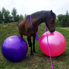 Grote paardenvoetbal 90cm